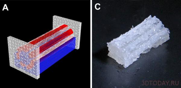 utrecht-3d-printing-tissue-factory-3